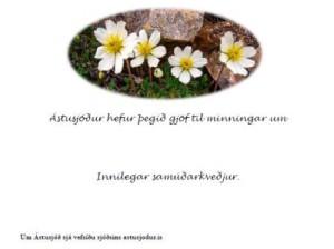 minningarkort_astusjods